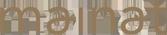 tfile_logo